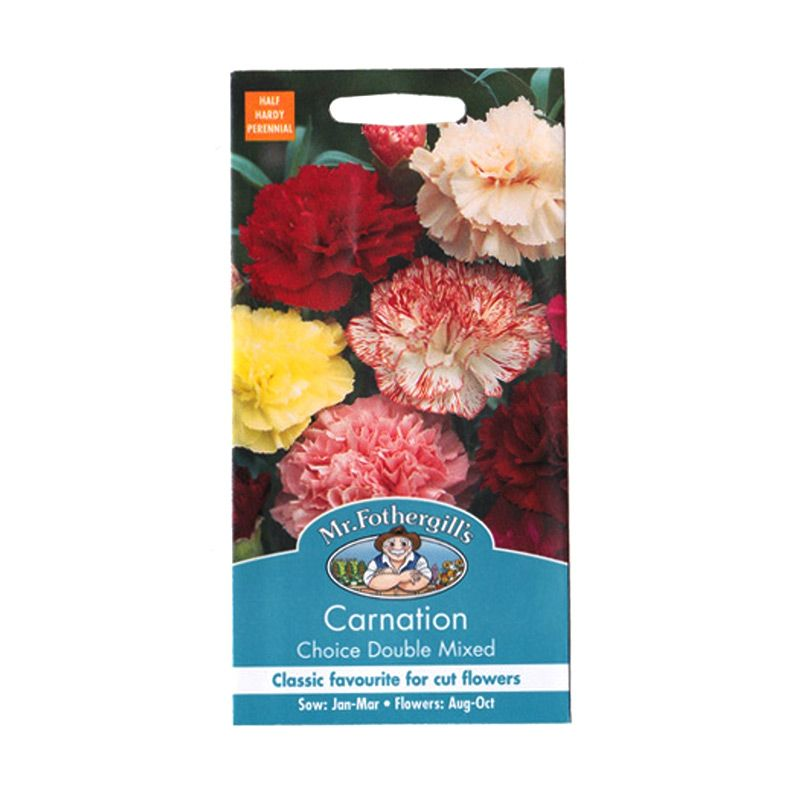 Bibit Bunga Carnation Choice Double Mixed Tanaman