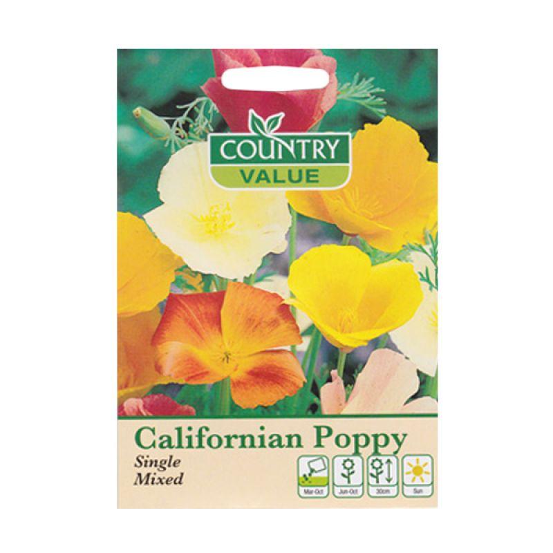 Country Value Californian Poppy Single Mixed Bibit Bunga
