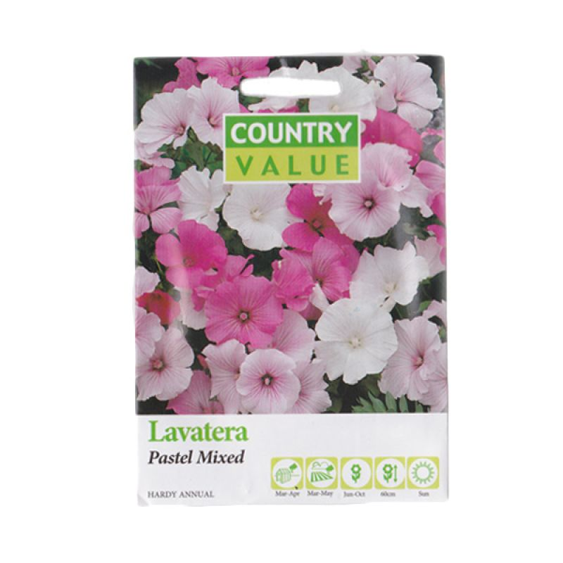 Country Value Lavatera Pastel Mixed Bibit Tanaman