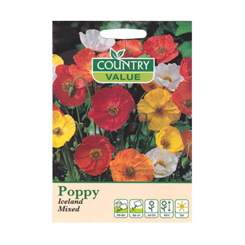 Country Value Poppy Iceland Mixed Bibit Bunga