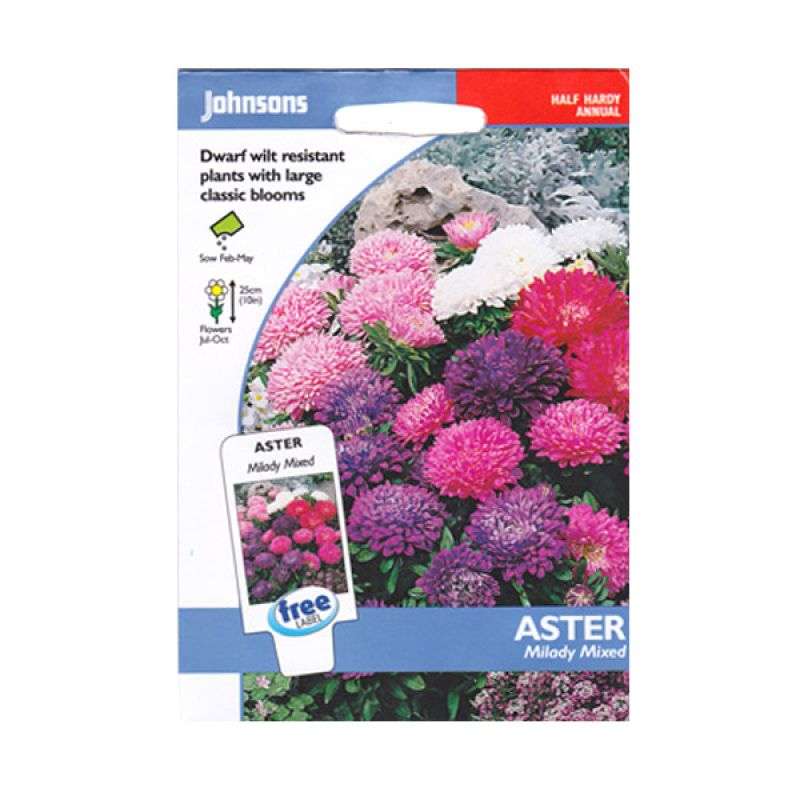 Johnsons Seed Aster Milady Mixed Bibit Tanaman