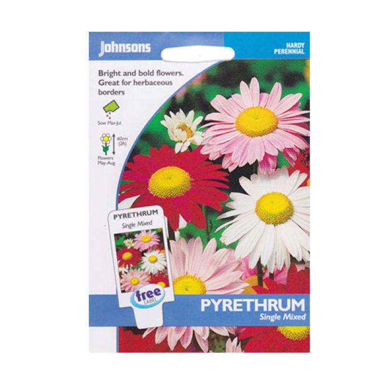 Johnsons Seed Pyrethrum Single Mixed Bibit Tanaman