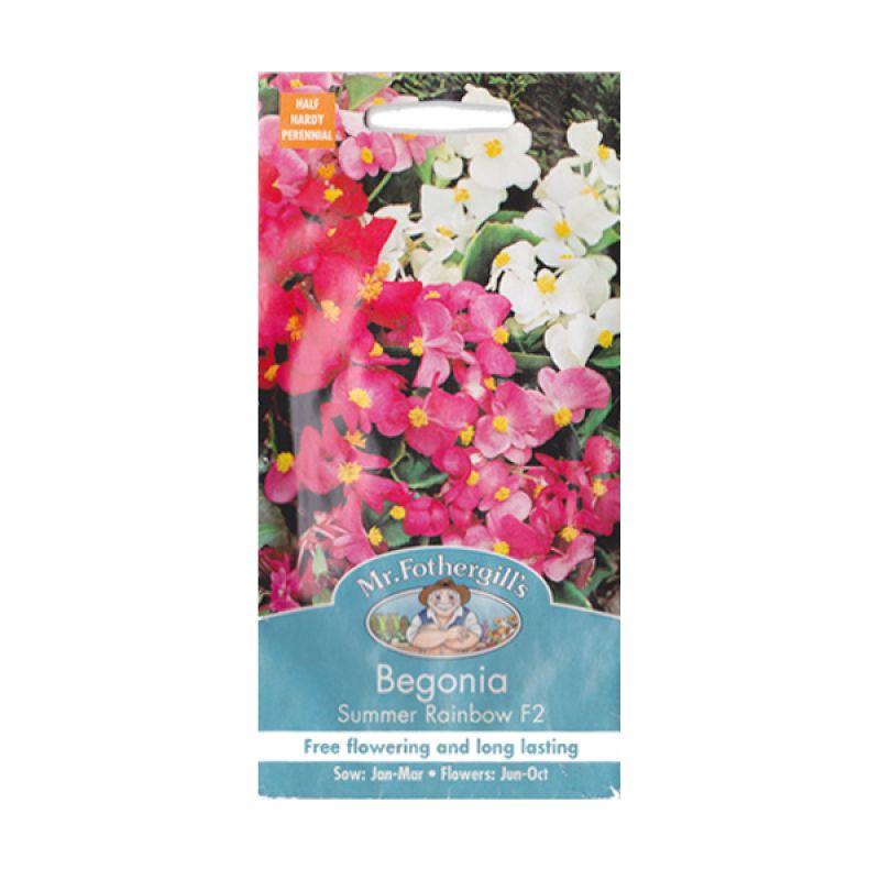 Mr.Fothergill's Begonia Summer Rainbow F2 Bibit Bunga
