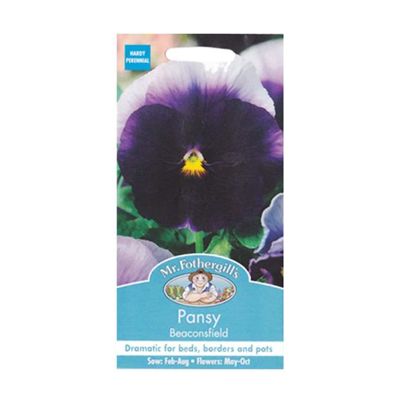 Mr Fothergill's Pansy Beaconsfield Dark Purple Bibit Tanaman