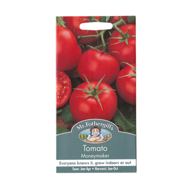 Mr Fothergill's Tomato Moneymaker Merah Bibit Tanaman [Standard]