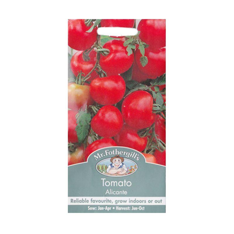 Mr Fothergill's Tomato Alicante Merah Bibit Tanaman