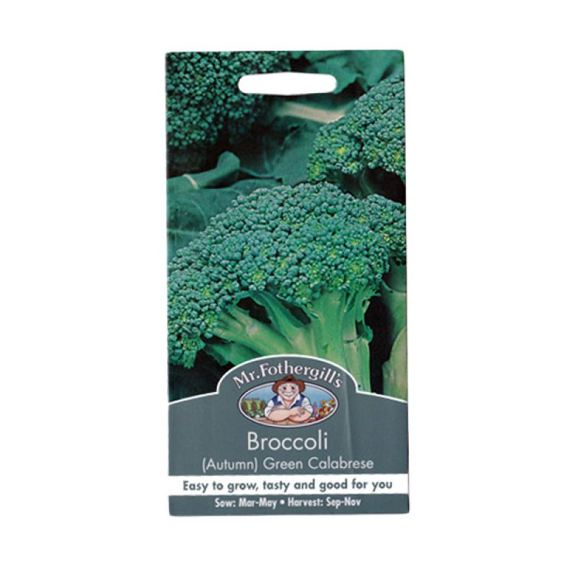 Mr Fothergill's Broccoli Green Calabrese Hijau Bibit Tanaman