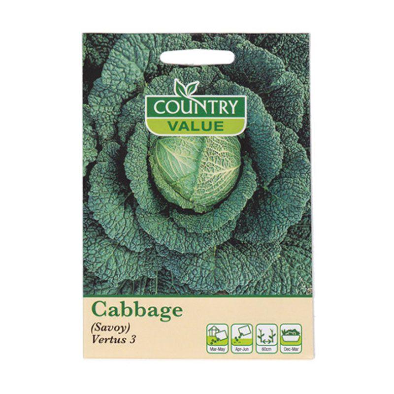 Mr Fothergill's Cabbage Savoy Vertus 3 Hijau Bibit Tanaman