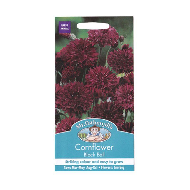 Mr Fothergill's Cornflower Black Ball Merah Bibit Tanaman