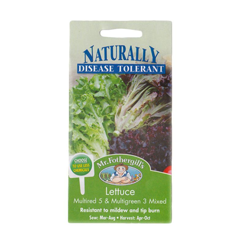 Mr Fothergill's Lettuce Multired 5 Multigreen 3 Mixed Bibit Tanaman