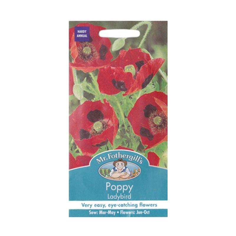 Mr Fothergill's Poppy Ladybird Merah Bibit Tanaman