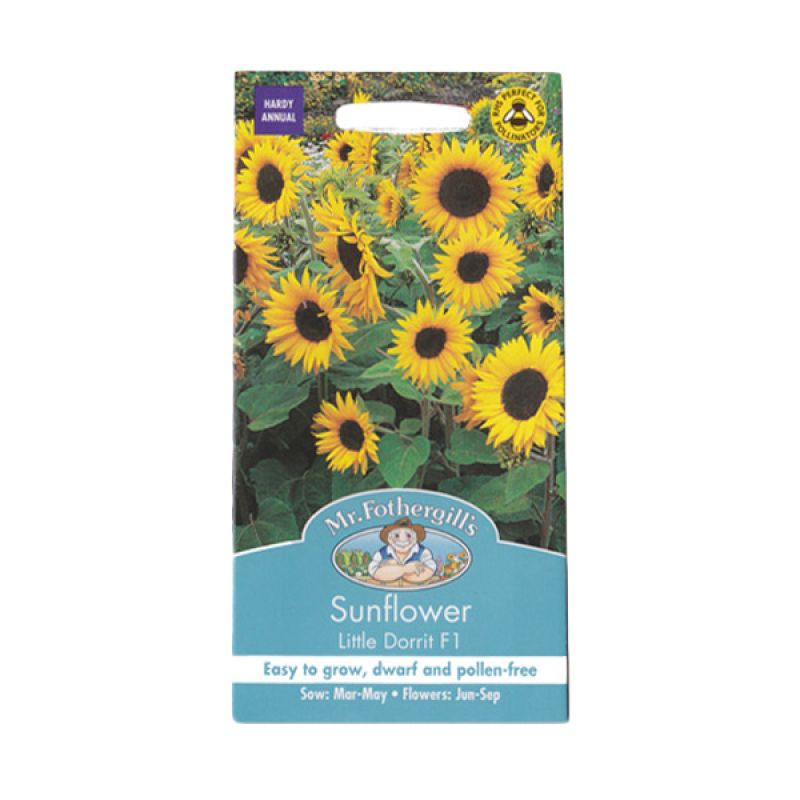 Mr Fothergill's Sunflower Little Dorrit F1 Kuning Bibit Tanaman