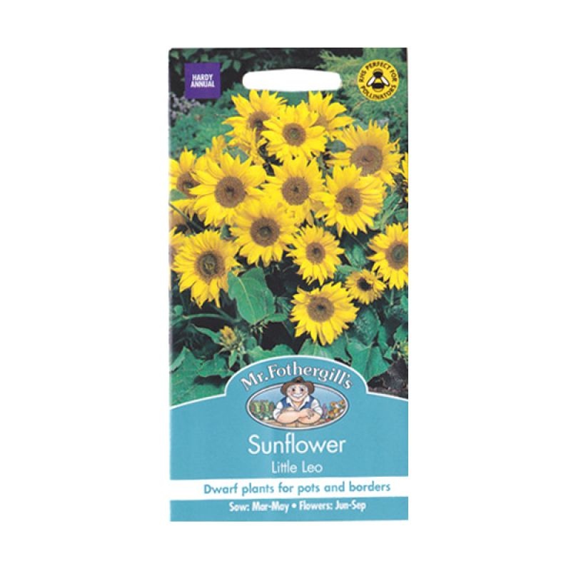 Mr Fothergill's Sunflower Little Leo Bibit Tanaman