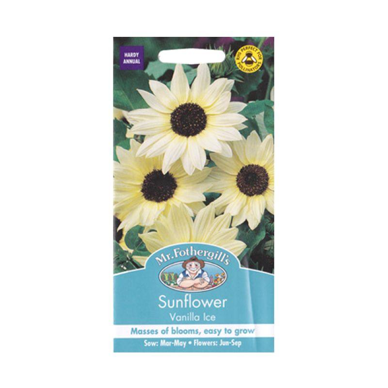 Mr Fothergill's Sunflower Vanilla Ice Bibit Tanaman