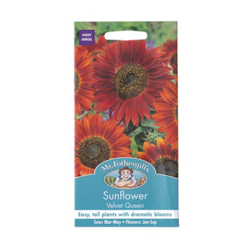 Mr Fothergill's Sunflower Velvet Queen Merah Bibit Tanaman