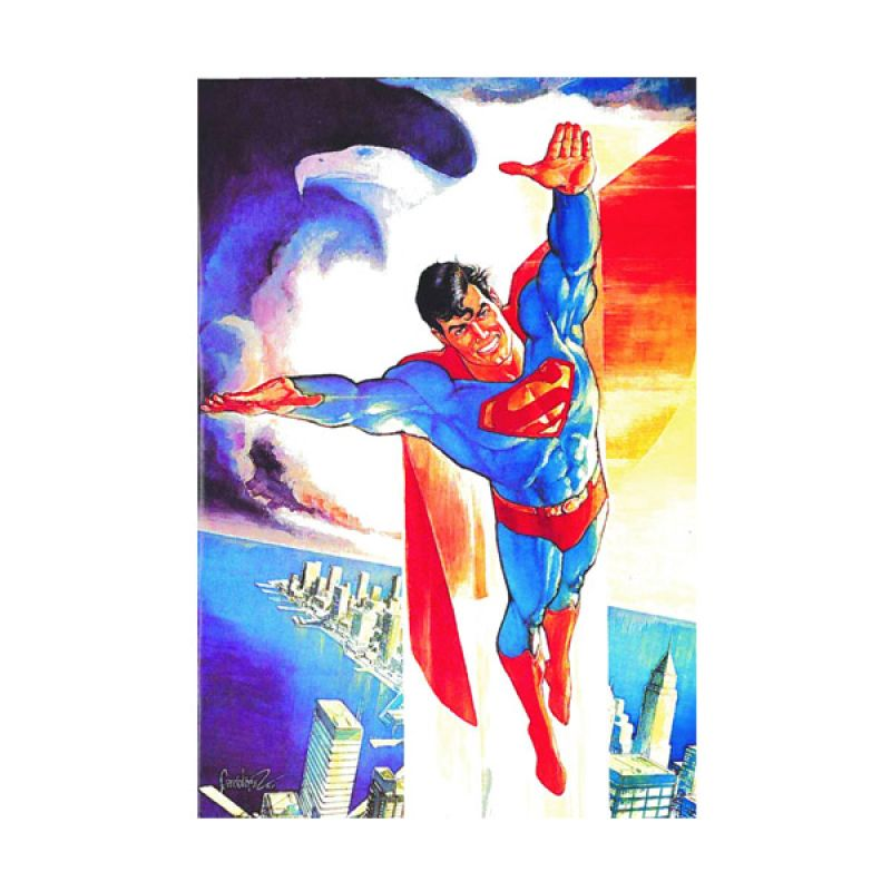 DC Comics Adventures Of Superman Jose Luis Garcia Lopez HC Buku Komik