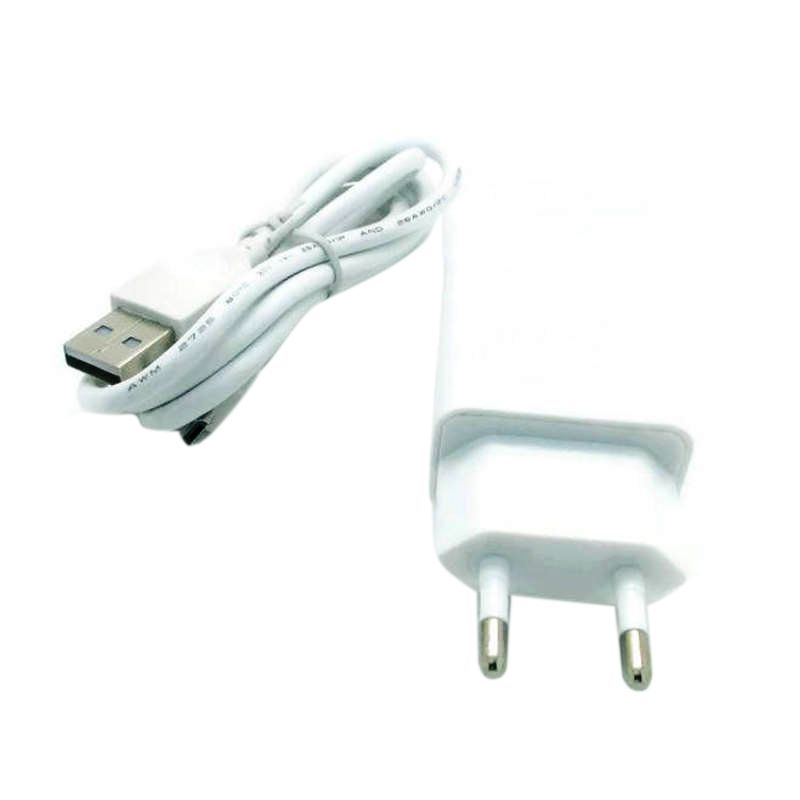 Lenovo White Charger + USB Data Cable