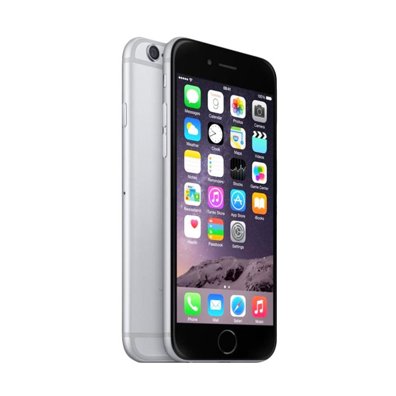 Apple iPhone 6 Gray 64 GB Smartphone