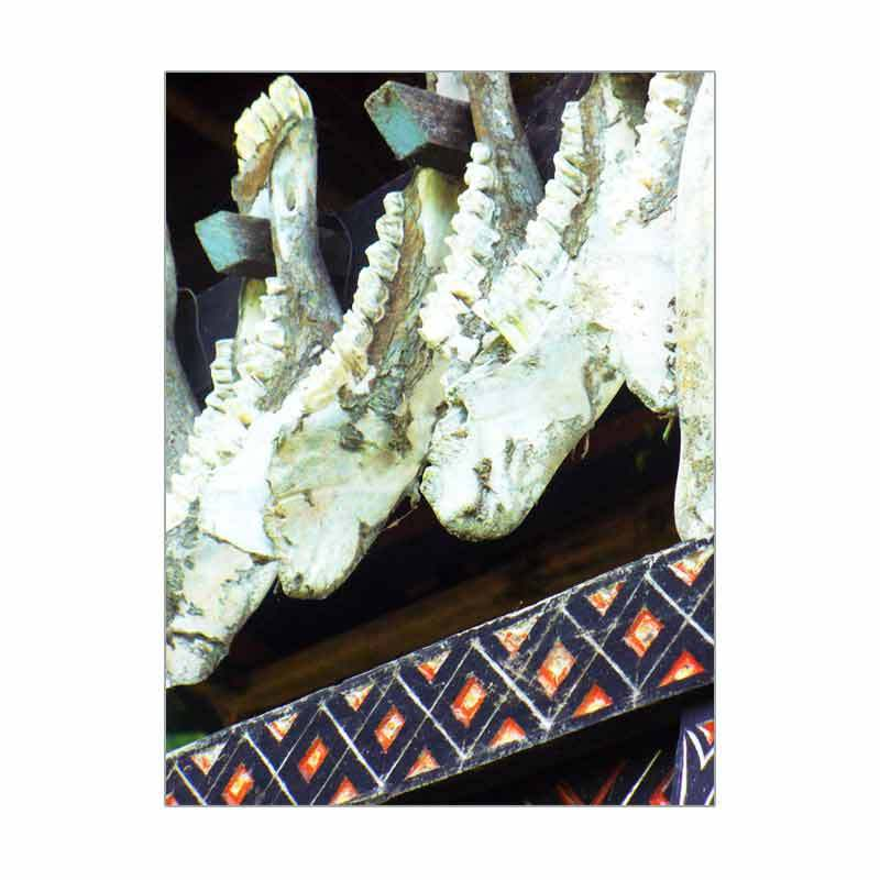 Gelar Cultural Trip to Toraja