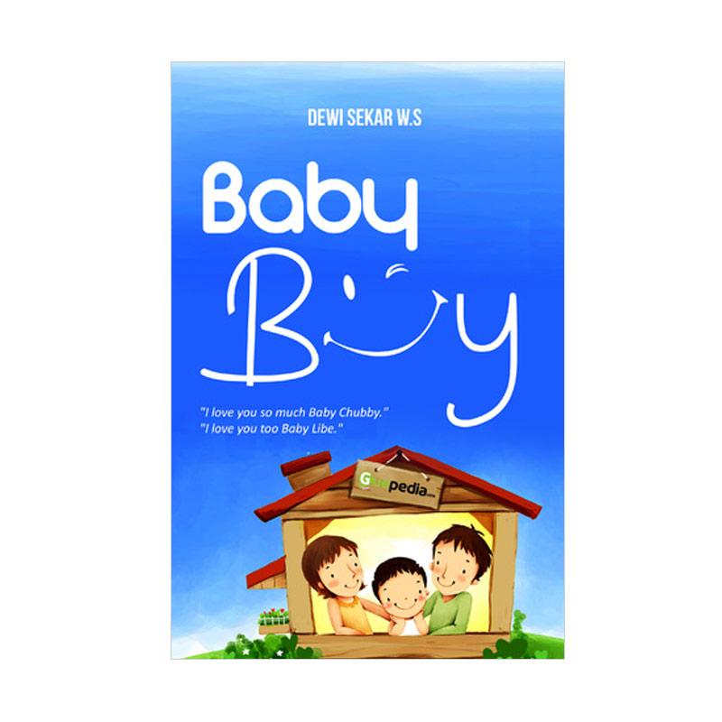 Baby Boy by Dewi Sekar W.S Buku Novel