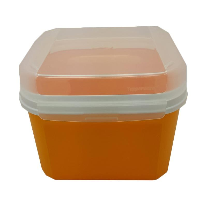 Tupperware Signature Square Orange Toples