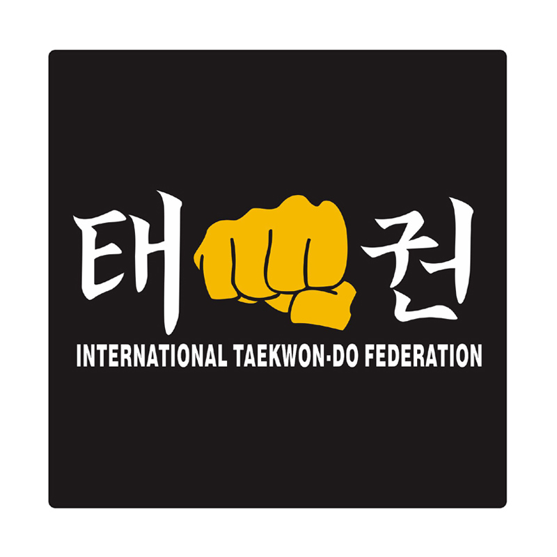 Kyle Taekwondo ITF Fist Cutting Sticker