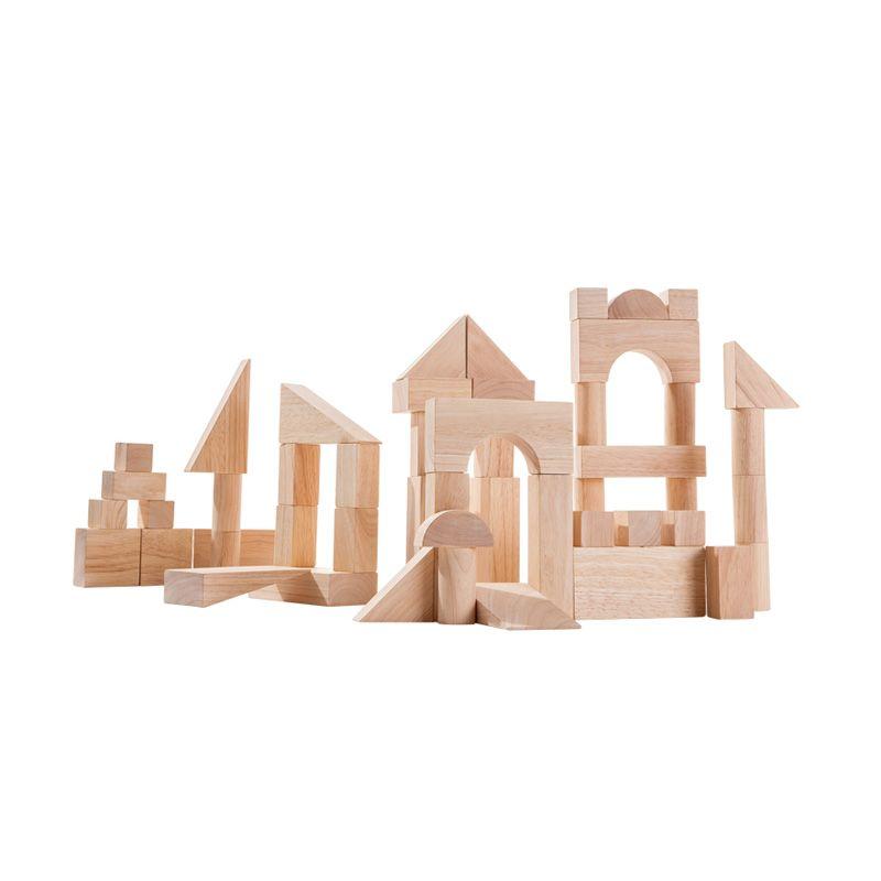 Plan Toys 50 Unit Blocks PT5502 Mainan Anak