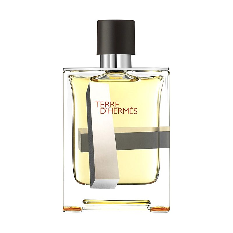 Hermes Terre D Perspective EDT Parfum Pria [100 mL]