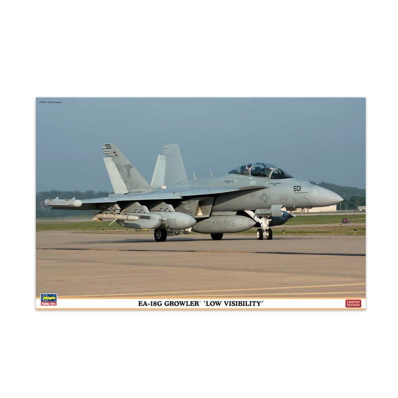 Hasegawa EA-18G Growler Low Visibility