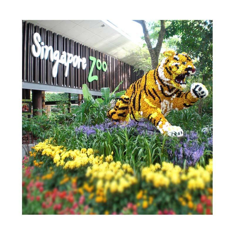 Point Tour Singapore Zoo Paket Perjalanan Wisata [Anak-Anak]