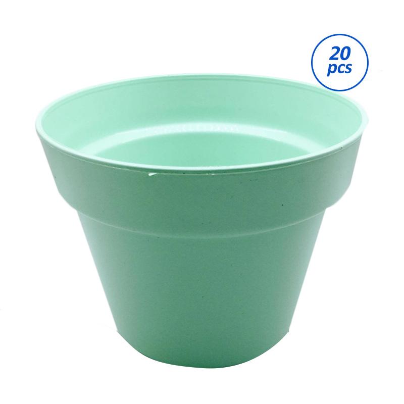 Primrose Pot Tanaman - Hijau [20 pcs]