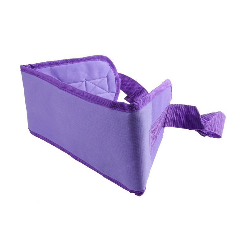 Radysa Purple Children Safety Belt