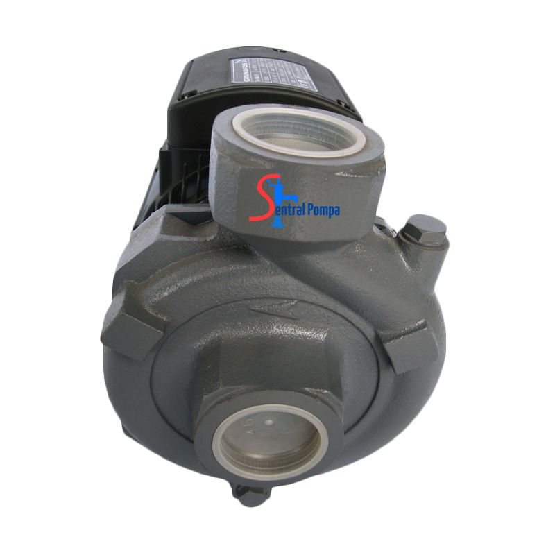 Grundfos NS Basic Transfer Pompa Air [13-18 m]