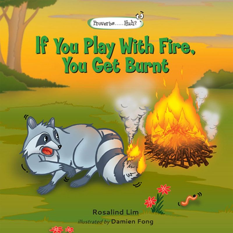 If You Play With Fire You Get Burnt Buku Anak