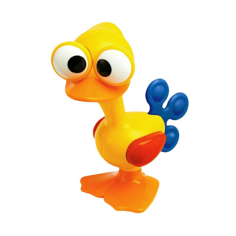 Tolo Crazy Eyes Bird