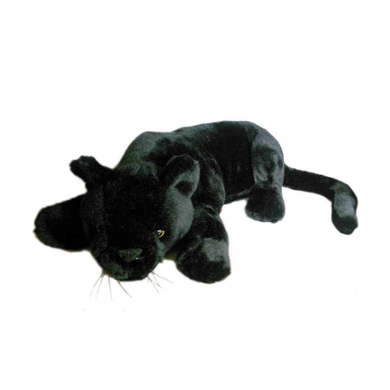 95 Gambar Hewan Macan Kumbang Gratis