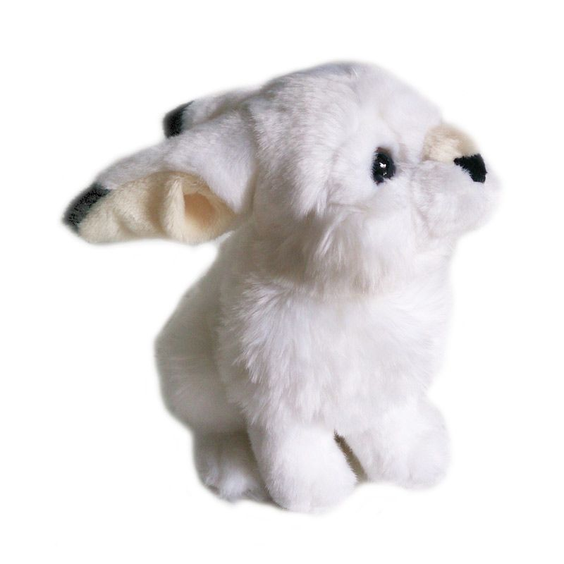 Toylogy Kelinci Himalaya Putih Boneka Mainan Anak [8 Inch]