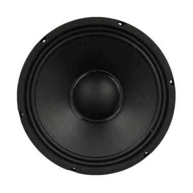 ACR1 Excellent Speaker [10 Inch/ 400 W]