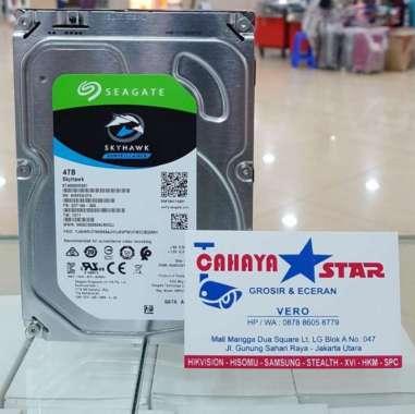 Seagate SkyHawk Surveillance Hard Disk Internal [4TB/3.5 Inch]