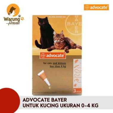 harga Advocate Obat Tetes Kutu Kucing dan Musang berat dibawah 4 kg 200 g Blibli.com
