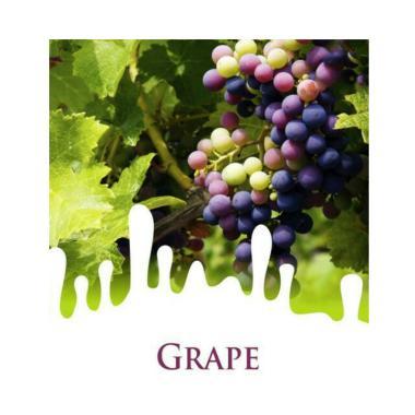 Maica Leaf Buah Anggur Grape Benih Tanaman [15 Benih]