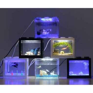 Jual Beli Ikan Cupang Harga Terbaru September 2020 Blibli Com