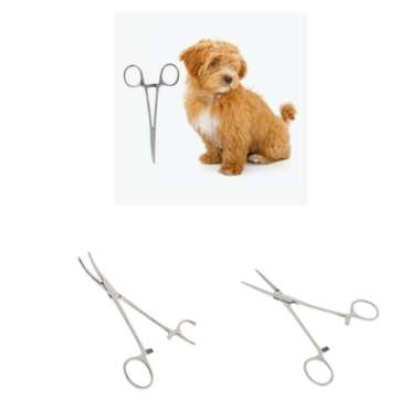 harga Pet Dog Cat Forceps Hamosta Ear Cleaning Straight/Curved Clamp 14cm - Blibli.com