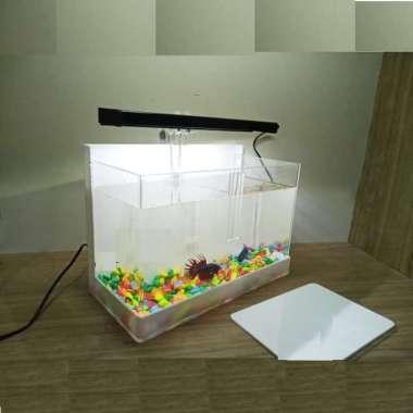 Jual Aquarium Ikan Cupang Terbaru Harga Murah Blibli Com