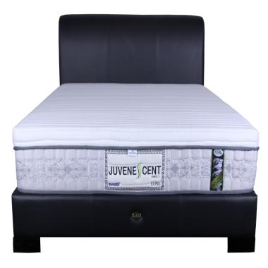 Dunlopillo Juvenescent Kasur Springbed [Mattress Only]