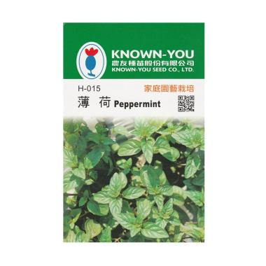 Known You Seeds Benih Tanaman Peppermint atau Daun Mint