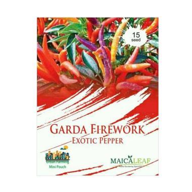 Maica Leaf Cabe Garda Firework Exotic Pepper Benih Tanaman [15 Benih]