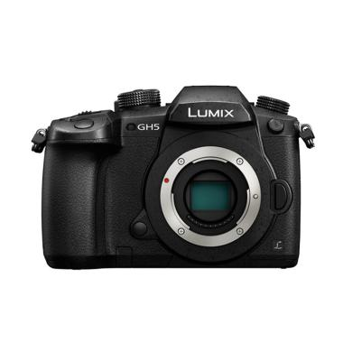 Panasonic Lumix DMC-GH5 Kamera Mirrorless - Hitam