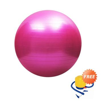 Bola Fitnes / Gym Ball + Free Pompa Angin Manual