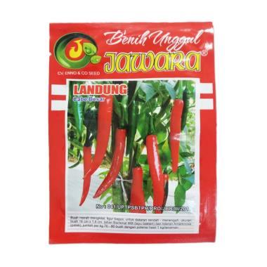 Jawara Benih Cabai Besar - Merah [5 g]